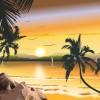 Suma Økologisk kokosnøttolje