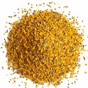 Bipollen granulat økologisk 125  gram
